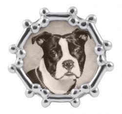 Dog Bone Round Frame