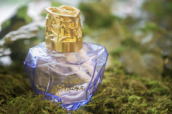 Lolita Lempicka Collection